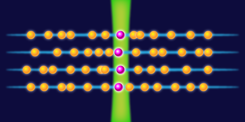 Synopsis: Taking the Temperature of a Bose-Einstein Condensate