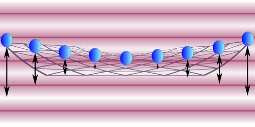 Synopsis: Freezing a 2D Ion Crystal
