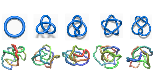 Synopsis: Neural Networks Know Their Knots