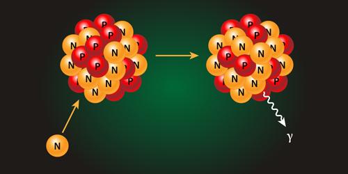 physics synopsis neutron capture constraints