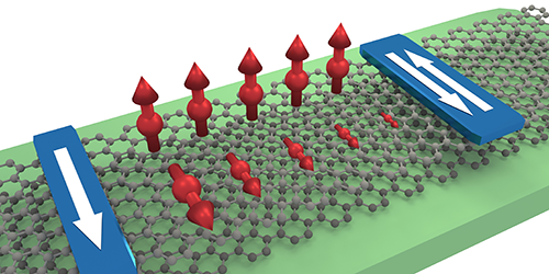 Anisotropic Spin Currents in Graphene