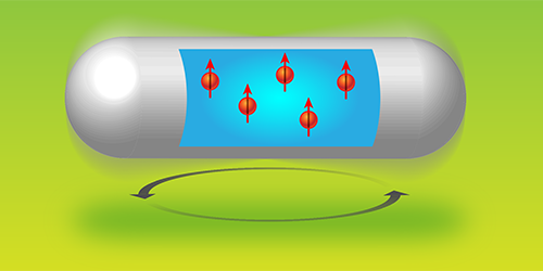 Synopsis: Fast Rotation Polarizes Water