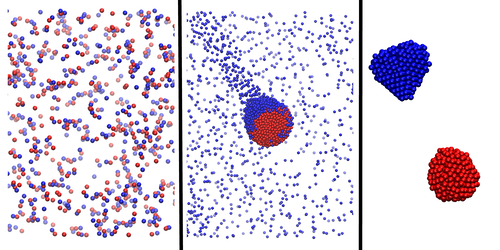 Synopsis: Chemical Conversations Lead to Particle Cliques