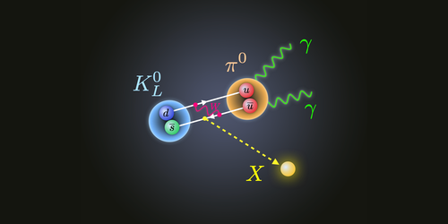 Synopsis: New Physics Possibilities from Kaon Decay