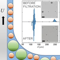 Capillary Sorting of Particles by Dip Coating