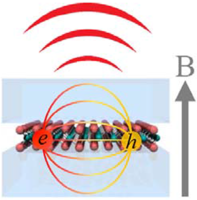 Magnetophotoluminescence of exciton Rydberg states in monolayer $\mathrm{WS}{\mathrm{e}}_{2}$