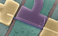 Spin-Orbit Protection of Induced Superconductivity in Majorana Nanowires