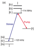 Observation of Interference between Resonant and Detuned stirap in the Adiabatic Creation of $^{23}\mathrm{Na}^{40}\mathrm{K}$ Molecules