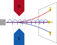 Quantum Rifling: Protecting a Qubit from Measurement Back Action
