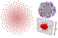 Collective dynamics and conformal ordering in electrophoretically driven nematic colloids