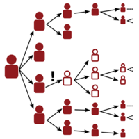 Descendant distributions for the impact of mutant contagion on networks