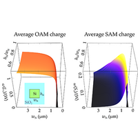 Angular momentum of optical modes in a silicon channel waveguide