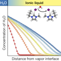 Anomalous Solute Diffusivity in Ionic Liquids: Label-Free Visualization and Physical Origins
