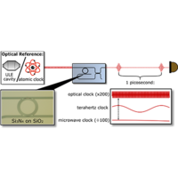 Terahertz-Rate Kerr-Microresonator Optical Clockwork