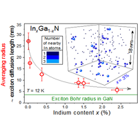 Probing Alloy Formation Using Different Excitonic Species: The Particular Case of InGaN