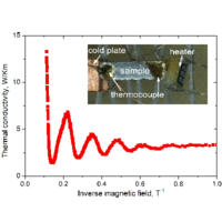 Giant Magnetic Quantum Oscillations in the Thermal Conductivity of TaAs: Indications of Chiral Zero Sound