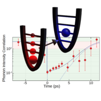 Preparation and Decay of a Single Quantum of Vibration at Ambient Conditions